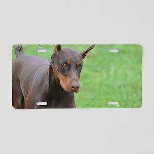 Cute Brown Doberman Pinsche Aluminum License Plate