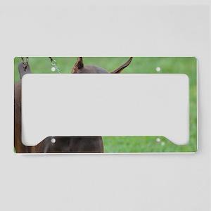 Cute Brown Doberman Pinscher License Plate Holder