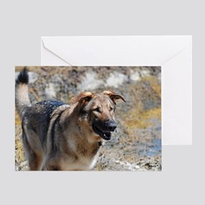 Shaking German Shepherd Greeting Card