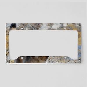 Shaking German Shepherd License Plate Holder