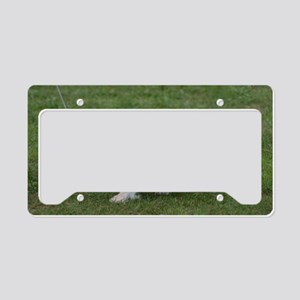 Japanese Chin Dog License Plate Holder