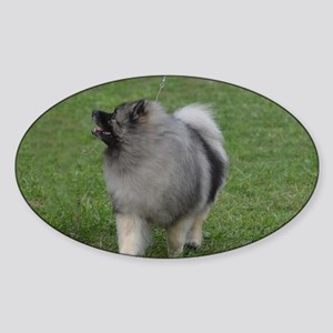 Adorable Keeshond Sticker (Oval)