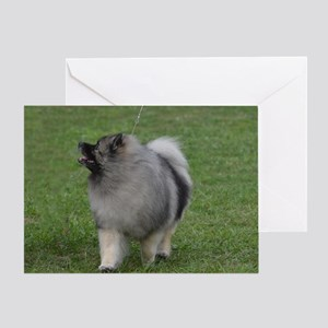 Adorable Keeshond Greeting Card