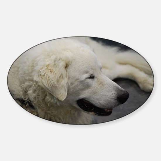 White Dog Sticker (Oval)