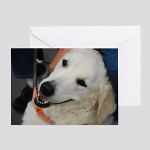 Adorable Kuvasz Dog Greeting Card