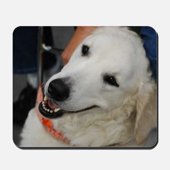 Adorable Kuvasz Dog Mousepad