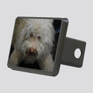 Lagotto Romagnolo Rectangular Hitch Cover
