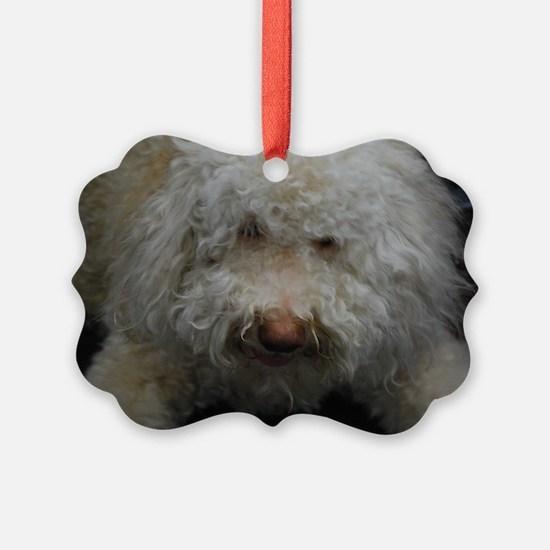 Lagotto Romagnolo Ornament