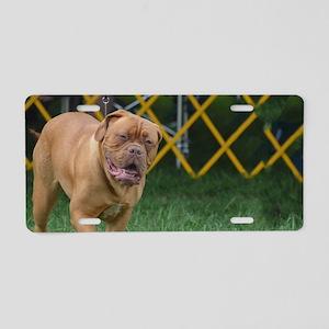 French Mastiff Dog Aluminum License Plate