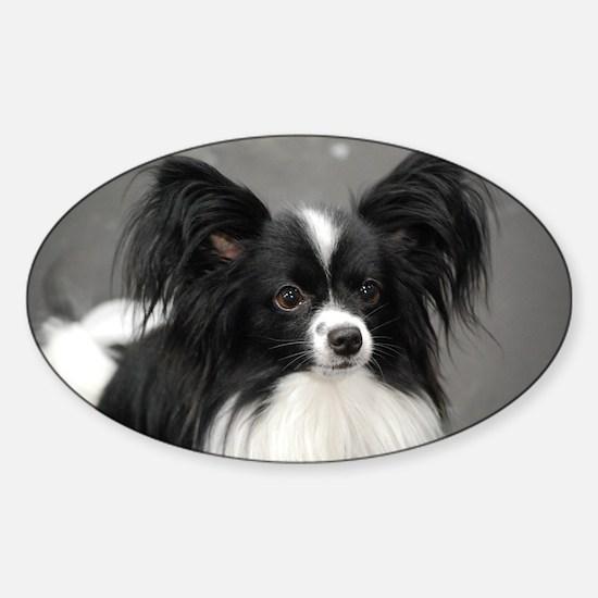 Black and White Papillon Dog Sticker (Oval)