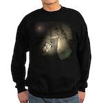 Sheperds Watch The Flocks By Night Jumper Sweater