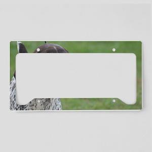 German Short Haired Pointer License Plate Holder
