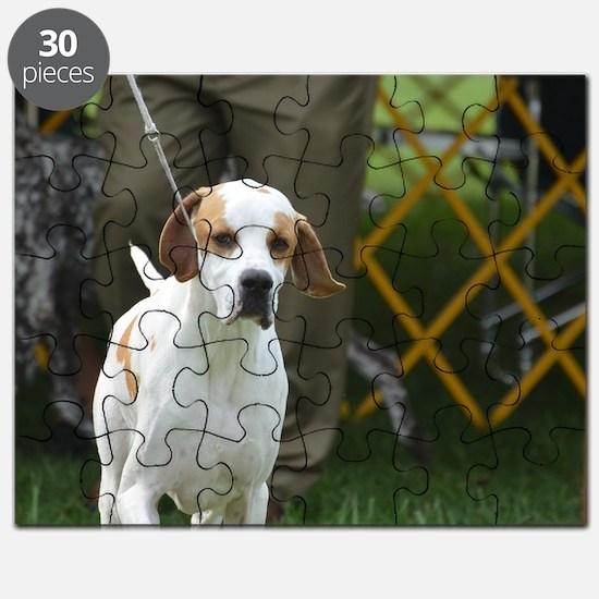 Cute Portuguese Pointer Puzzle