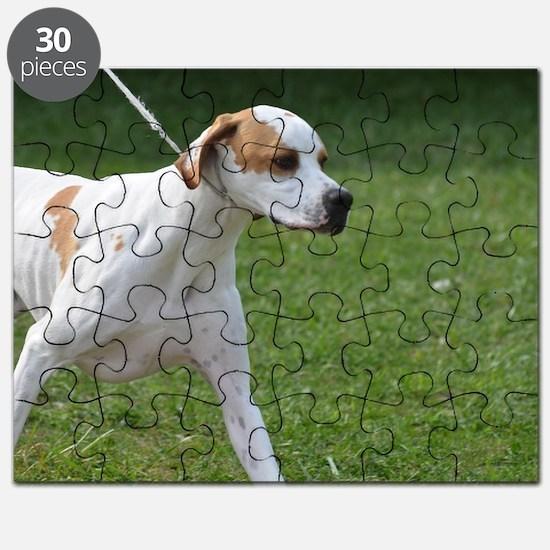 Portuguese Pointer Puppy Puzzle