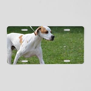 Portuguese Pointer Puppy Aluminum License Plate