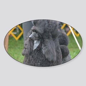 Poised Poodle Sticker (Oval)