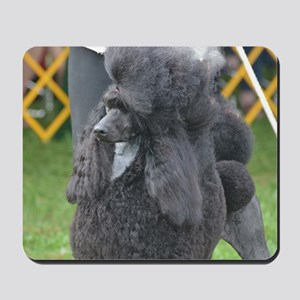 Poised Poodle Mousepad