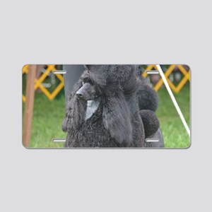 Poised Poodle Aluminum License Plate