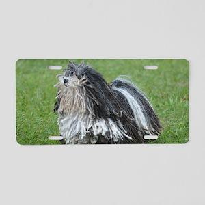 Adorable Puli Dog Aluminum License Plate