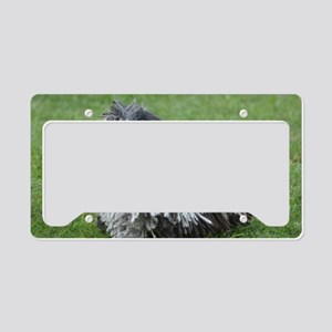 Adorable Puli Dog License Plate Holder