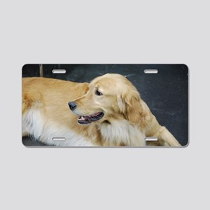 Golden Retriever Dog Aluminum License Plate