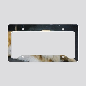 Golden Retriever Dog License Plate Holder