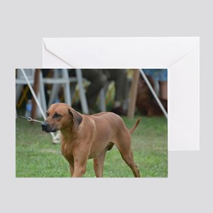 Rhodesian Ridgeback Dog Greeting Card