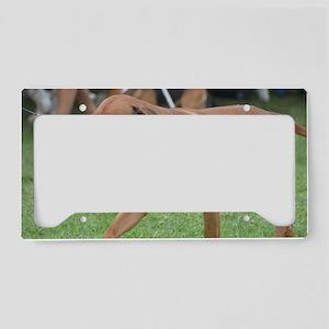 Pet Rhodesian Ridgeback License Plate Holder