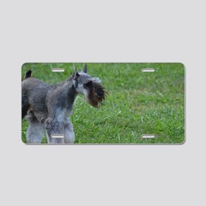 Clipped Coat on a Schnauzer Aluminum License Plate