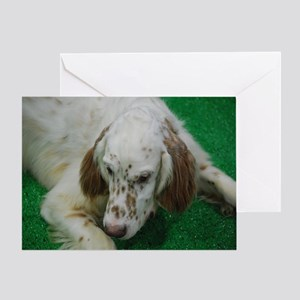 Cute English Setter Greeting Card
