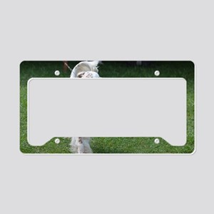 Adorable English Setter Dog License Plate Holder