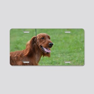 Sweet Irish Setter Dog Aluminum License Plate