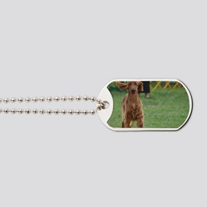 Playful Irish Setter Dog Dog Tags