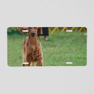 Playful Irish Setter Dog Aluminum License Plate