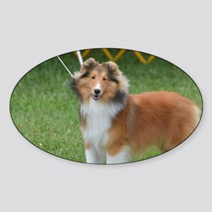 Adorable Sheltie Dog Sticker (Oval)
