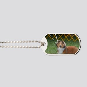 Amazing Sheltie Dog Tags