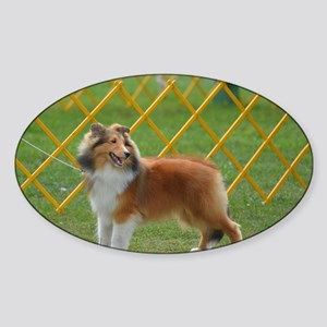 Cute Shetland Sheepdog Sticker (Oval)