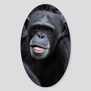Black Monkey Sticker (Oval)