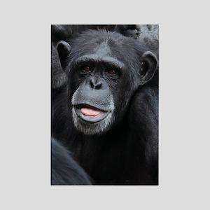 Black Monkey Rectangle Magnet
