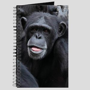 Black Monkey Journal