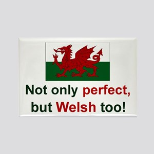 Perfect Welsh Rectangle Magnet