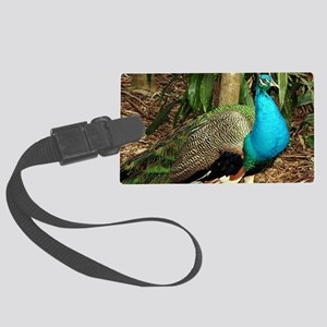 Peacock bird brightly colored Large Luggage Tag