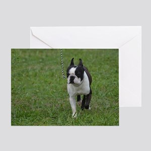 Classic Boston Terrier Dog Greeting Card