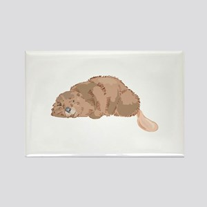 Sleeping Beaver Rectangle Magnet