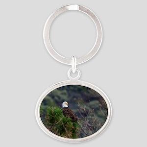 Bald Eagle on a Pine Tree Keychains