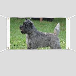 Cute Black Cairn Terrier Banner