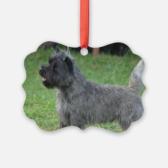 Cute Black Cairn Terrier Ornament