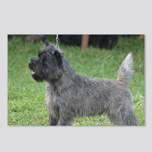 Cute Black Cairn Terrier Postcards (Package of 8)