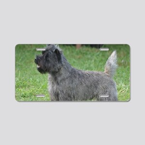 Cute Black Cairn Terrier Aluminum License Plate