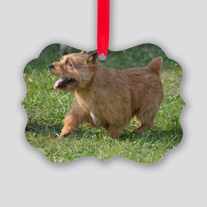 Cute Glen of Imaal Terrier Dog Picture Ornament